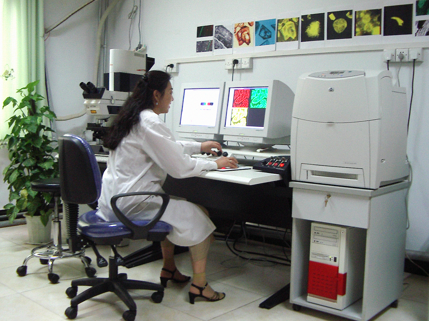 Laser scanning Confocal Microscopy